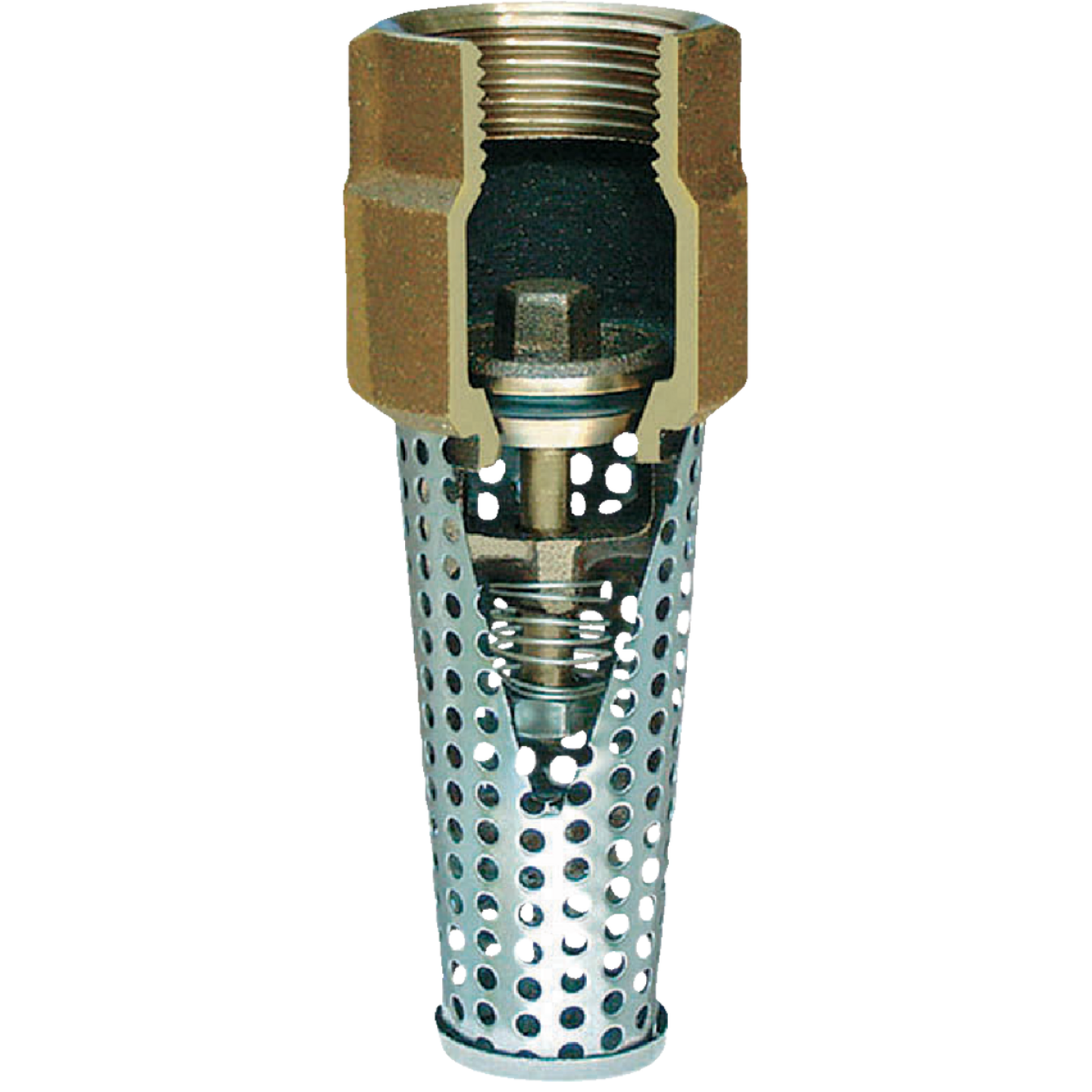 Simmons 1-1/4 In. Silicon Bronze Foot Valve, Lead Free Image 1
