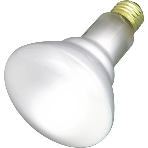 Satco 65W Frosted Medium Base BR30 Reflector Incandescent Floodlight Light Bulb (2-Pack)