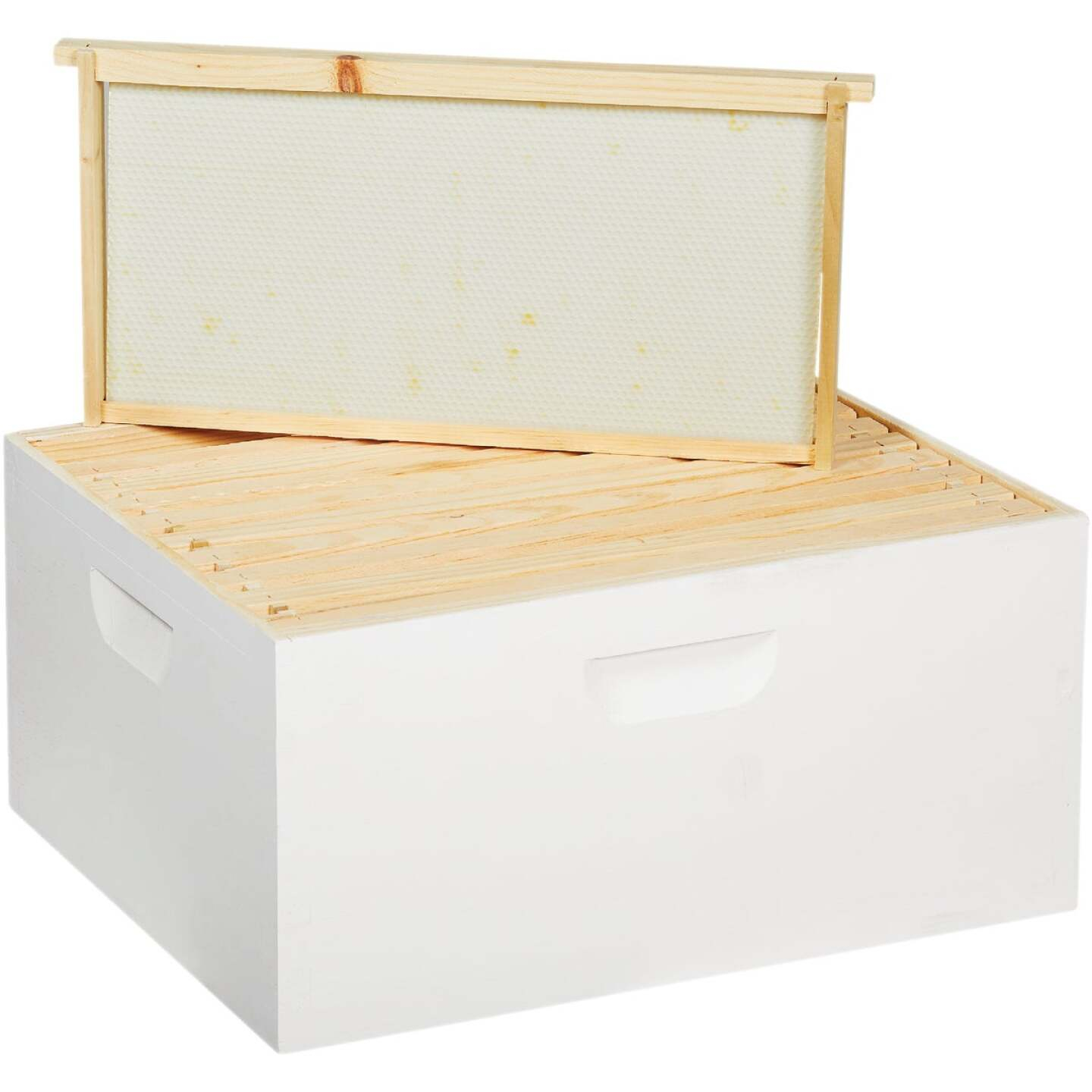 Little Giant 16.25 In. W. x 9.5 In. H.x 19.875 In. L. Assembled Deep Beehive, 10 Frames Image 1