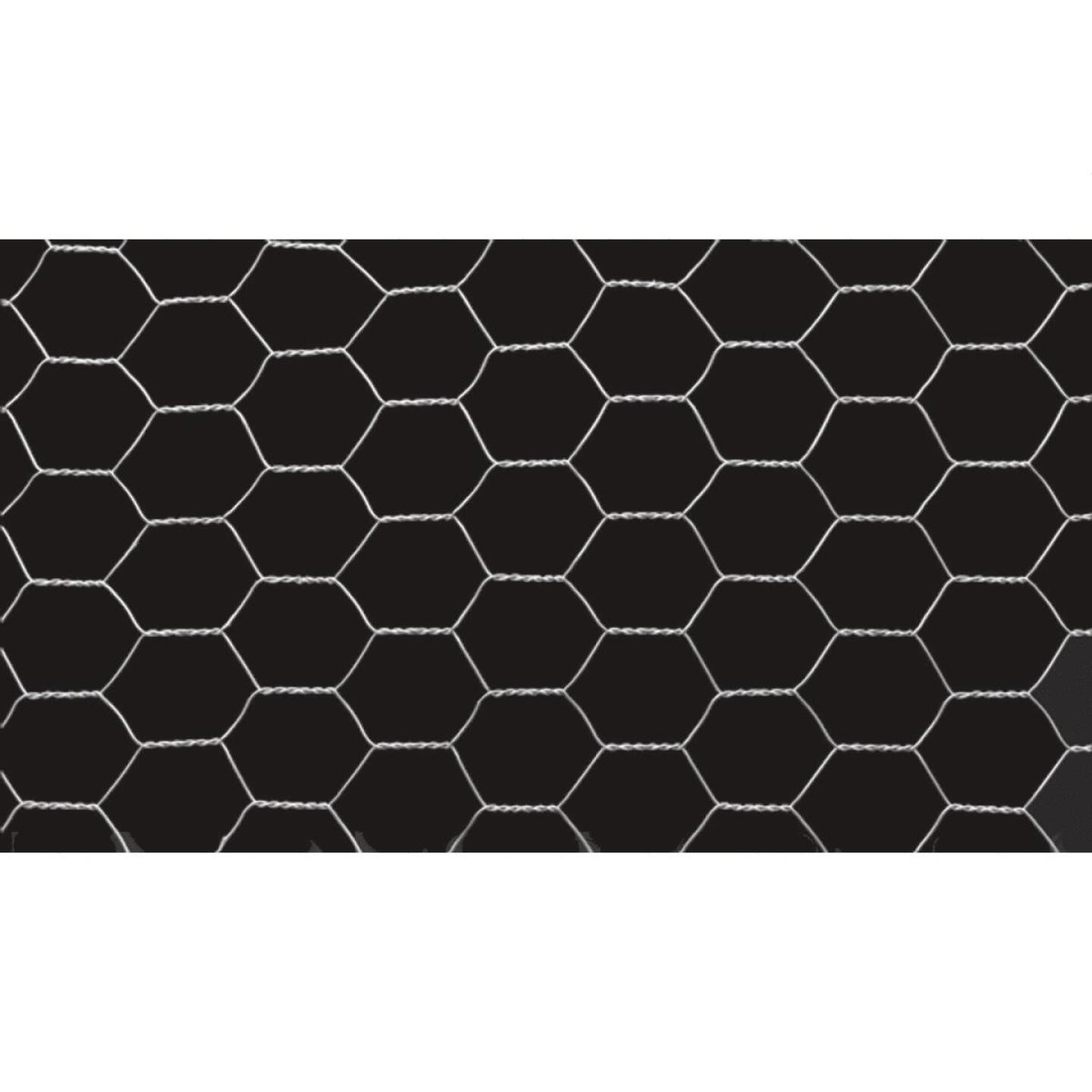 1/2 In. x 24 In. H. x 25 Ft. L. Hexagonal Wire Poultry Netting Image 4