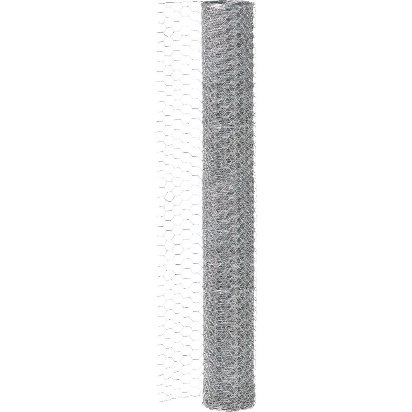 1/2 In. x 48 In. H. x 25 Ft. L. Hexagonal Wire Poultry Netting Image 3